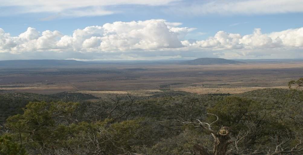 Navajo-County