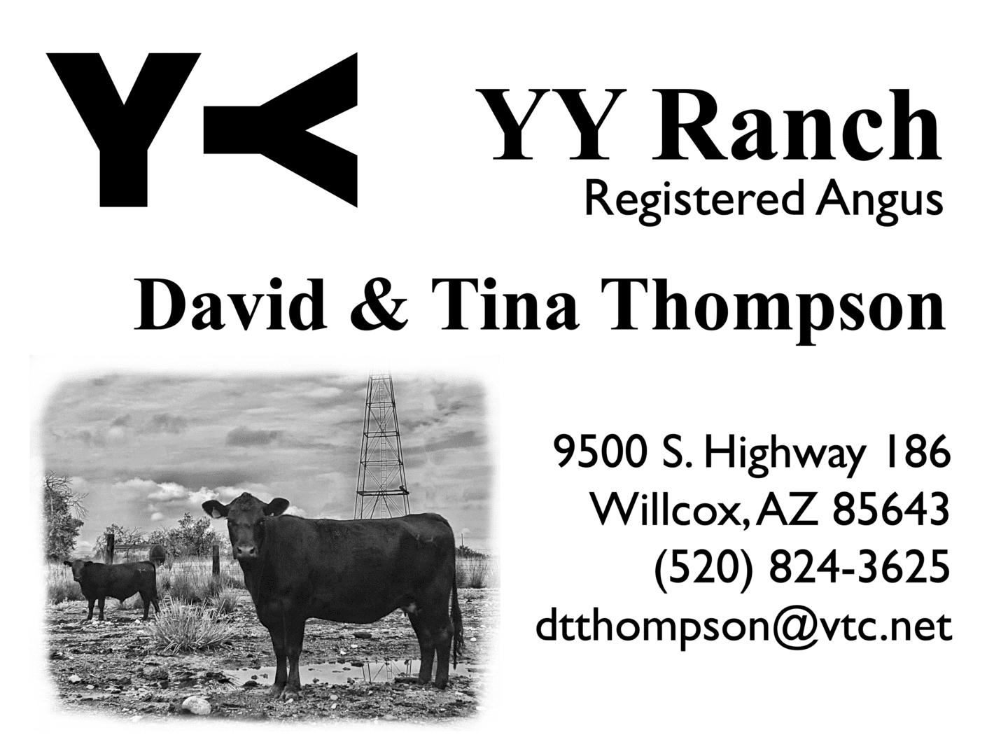 Contact David Thompson @ dtthompson@vtc.net or (520) 824-3625